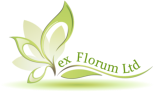 EX FLORUM LTD